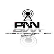 PNN logo mirror